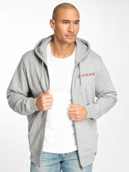 Dickies Sweat capuche Shallowater gris