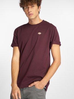 Dickies T-paidat Stockdale purpuranpunainen