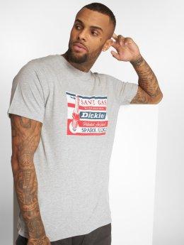 Dickies T-Shirt Jarratt grau
