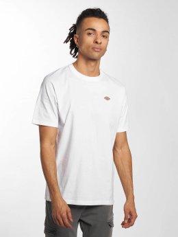 Dickies T-Shirt Stockdale white
