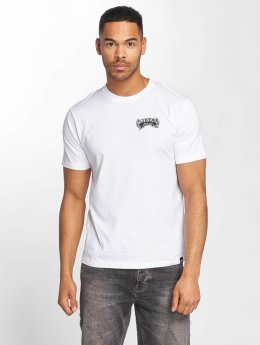 Dickies t-shirt Hewitt wit