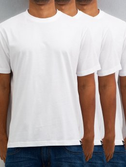 Dickies t-shirt 3er-Pack wit