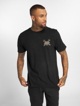 Dickies t-shirt Toano zwart