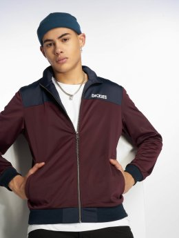 Dickies Transitional Jackets Tasley red