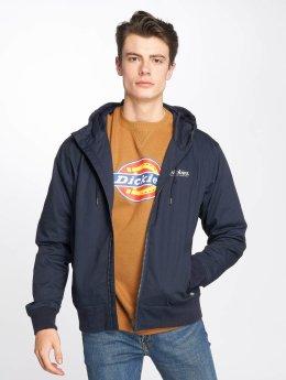 Dickies Windom Jacket Navy Blue