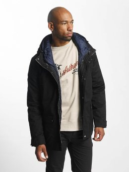 Dickies Winter Jacket Avondale black