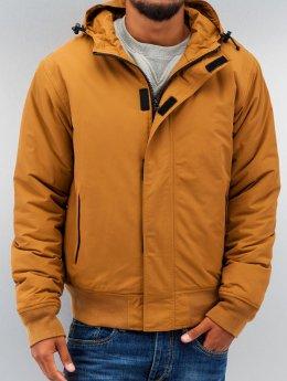 Dickies / winterjas Cornwell in bruin