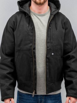 Dickies winterjas Jefferson zwart
