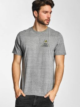 Electric T-Shirt WILD SOULS gris