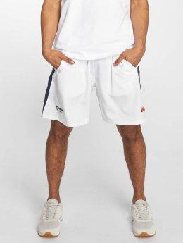 Ellesse shorts Tundra wit