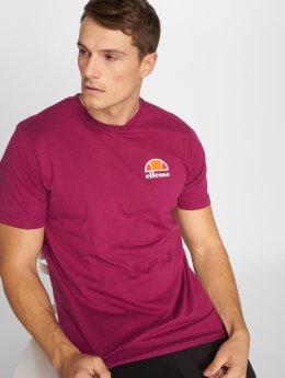 Ellesse T-Shirt Canaletto pourpre
