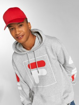 FILA Hoodies Urban Line Total 2.0 grå