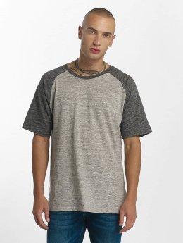 Iriedaily T-Shirt Chamisso Rugged grau