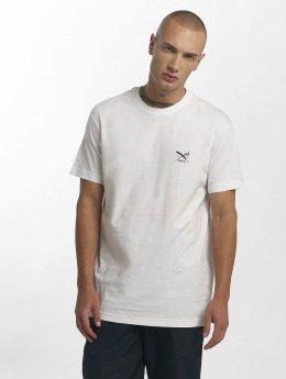 Iriedaily T-Shirt Chestflag weiß