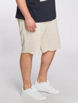 Jack & Jones jorColour Sweat Shorts White Melange