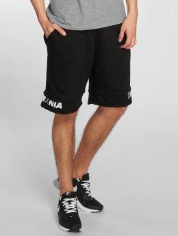 Jack & Jones Shorts jcoAfri schwarz