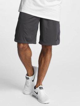 Jordan Shorts 23 Tech Dry grau
