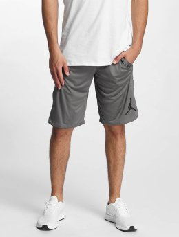 Jordan Shorts 23 Tech Dry grau