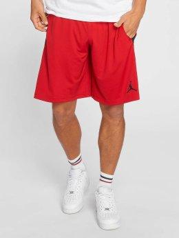 Jordan Shorts Dri-FIT 23 Alpha Training rot