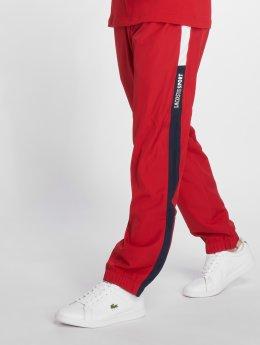 Lacoste Jogging Sport rouge