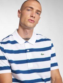 Lacoste Polo trika Stripe bílý