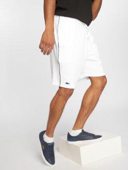 Lacoste Shorts Shower weiß