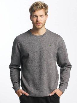 Lacoste Tröja Classic grå