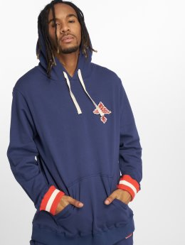 LRG Sweat capuche Always On The Grow bleu