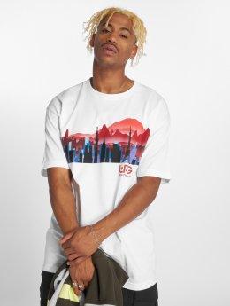 LRG T-shirts Astro Rising hvid