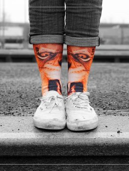 LUF SOX Socken Lion bunt
