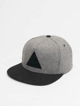 NEFF Snapback Caps Melton šedá