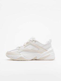 Nike Baskets M2k Tekno blanc