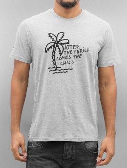 Oxbow T-Shirt Torto grau