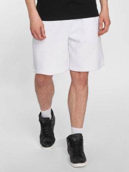 Pelle Pelle Short Corporate blanc