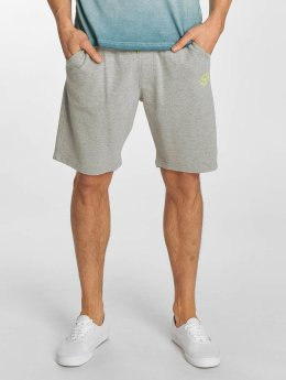 Petrol Industries Shorts Sweat grau
