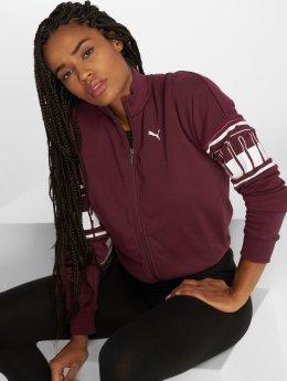 Puma   Rebel  pourpre Femme Veste mi-saison légère