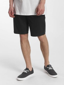 Quiksilver Short Everyday Chino Light gris