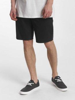Quiksilver shorts Everyday Chino Light grijs