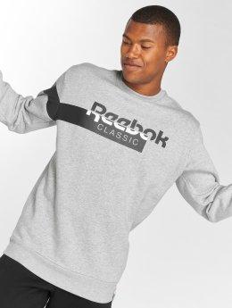 Reebok Pullover AC F DIS Fleece grau