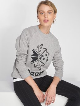 Reebok Sweat & Pull AC FT gris
