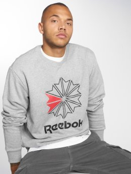 Reebok Sweat & Pull AC FT Big Starcrest gris