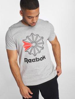 Reebok T-Shirty F GR szary