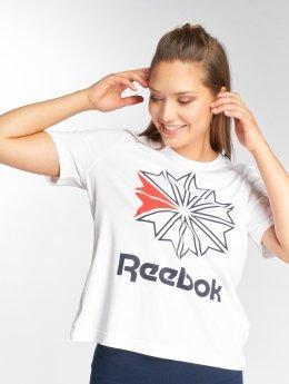 Reebok T-skjorter AC GR hvit