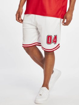 Rocawear shorts Mesh wit