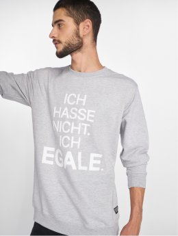 SHINE Original Sweat & Pull Egale gris