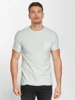 SHINE Original T-Shirt Giovanni vert