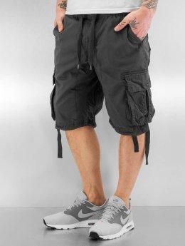 Southpole Shorts Broome grå