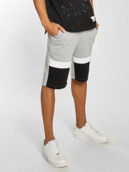 Southpole Shorts Anorak grau