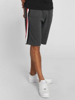 Southpole Shortsit Fleece harmaa