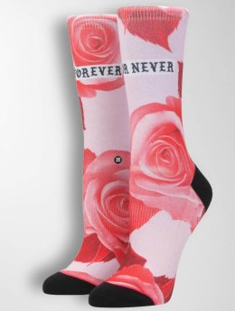 Stance | Dedication Tomboy magenta Femme Chaussettes
